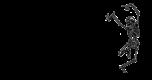 logo&name
